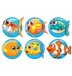 Different kinds of fish on round badge vector image