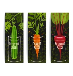 Dieting Carrot Cucumber Beet Juices Hand Drawn vector image