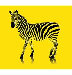 yellow zebra vector image