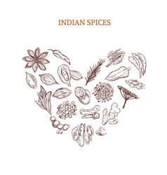 Hand drawn indian spices concept vector