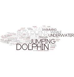 Dolphin word cloud concept vector