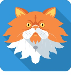 fluffy Persian Cat icon flat design vector image
