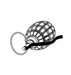 grenade on white background vector image