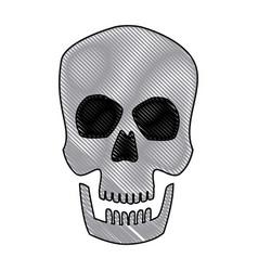 Human skull male medical biology science vector