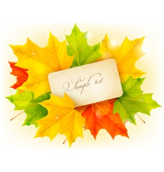Card with autumn colorful leaves vector