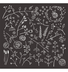 Field Flowers and Plants Decoration Collection on vector image