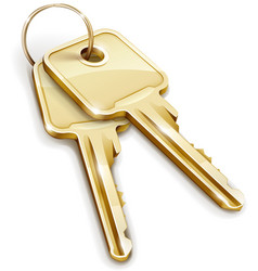 sheaf of gold keys vector image