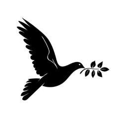 Dove with branch Symbol of peace vector image