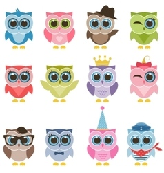 Owls with accessories vector image vector image