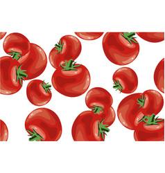 Tomato seamless pattern on white vector