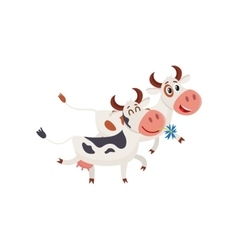 Two spotted cows walking together romantically vector