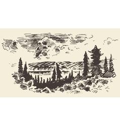 Drawn landscape fir forest vector image vector image
