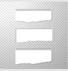 Horizontal torned off piece of paper with spiral vector