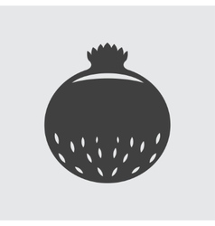 Pomegranate icon vector