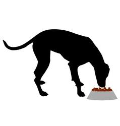 Dog feeding vector image