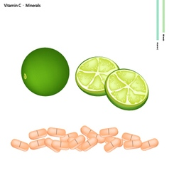 Green limes with vitamin c and minerals vector