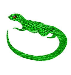 abstract lizard vector image vector image