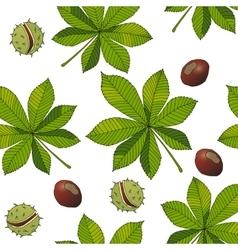 Aesculus buckeye horse chestnut chestnut vector