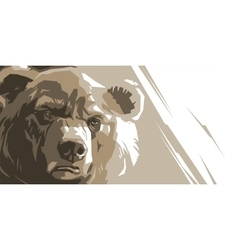 Angry brown bear vector image vector image