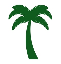 leafs natural palm tropical icon vector image vector image