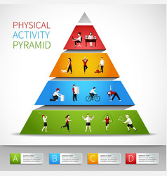 Physical activity pyramid infographic vector