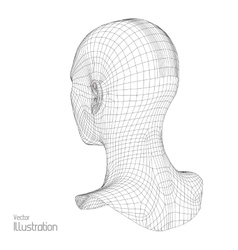 Head of the person from a 3d grid human wire vector
