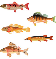 Animal aqua aquarium vector