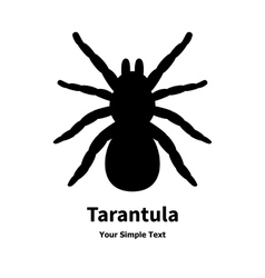 A black spider tarantula vector