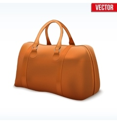 Classic Leather Bag vector image