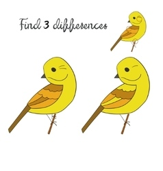 Find differences yellowhammer bird vector image