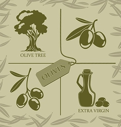 Set for olive labels vector