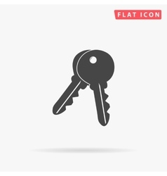Keys simple flat icon vector