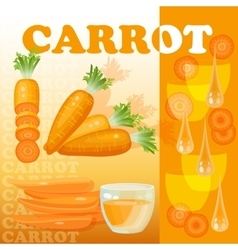 Carrot glass juice drops and slices isolated vector image
