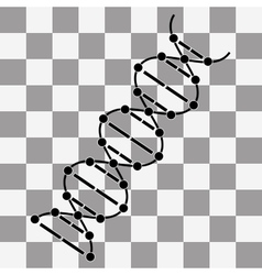 image DNA Drawing on transparency vector image vector image