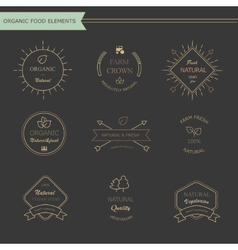 Set of vintage style elements for labels and vector image vector image