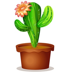 A cactus plant with a flower vector