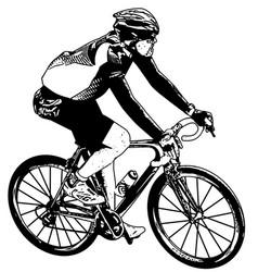 bicyclist sketch vector image vector image