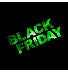 black friday green vector image
