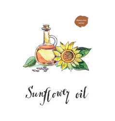 Bottle of sunflower oil sunflower and seeds vector