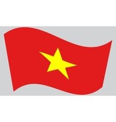 Flag of Vietnam waving vector image