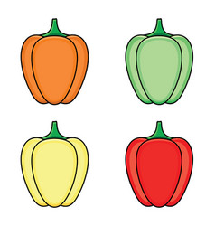 Flat sketch fresh ripe bellpepper set vector