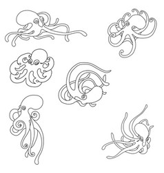 octopus coloring set vector image vector image