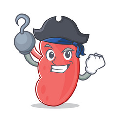 Pirate kidney character cartoon style vector