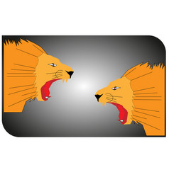 two heads of orange lion lions snarling at each vector image vector image