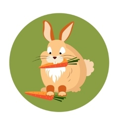 Cute Rabbit Eating a Carrot vector image vector image