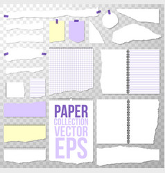 Paper collection different torn pieces shapes and vector