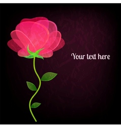 Beautiful rose on black background card with a vector image