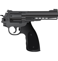 correct pistol vector image vector image
