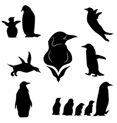 penguinSet vector image vector image