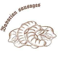 Pencil hand drawn of bavarian sausages on salad vector
